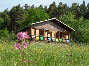 včelín-v-létě-Renata